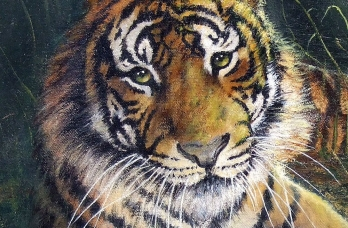 tiger in the grass 16 x 20 code d7